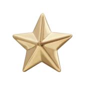 Звезда лейтенантская, красное золото (лейтенант, старший лейтенант, капитан) 13мм