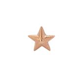 Звезда лейтенантская из серебра 925 пробы с позолотой