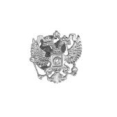 Значок Герб Российской Федерации из белого золота с фианитом